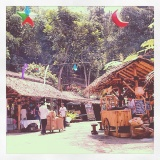 Makan Sambil Menikmati Alam di KampungDaun